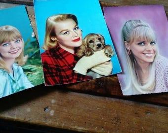 Set of 6 cards postcards vintage