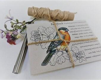 Pack of 5 Garden Birds postcards