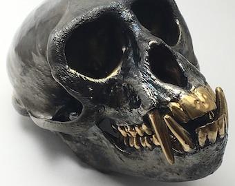 Vervet monkey skull real bone 24kt gold teeth. Electroplated skull