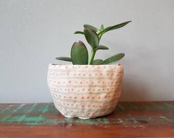 Dotted, handmade home studio pottery, plant pot, succulent pot, cactus pot, ceramic, home decor, planter.