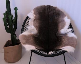 Fallow deer hide, Fallow deer rug, Fallowdeer fur, Fallowdeer skin
