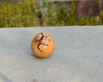 Lichtenberg Gourd Art