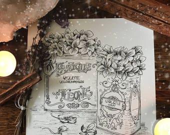 Pastiglie Leone Illustration