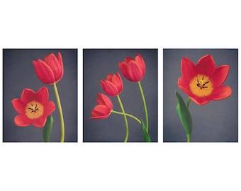 Floral Wall Art Set, Botanical Print Set, Red Tulip Wall Art, Still Life Flowers, Home Decor, Nature Lover Gift, Livingroom Wall Art,