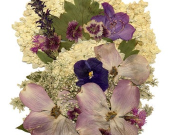 "5x7 Greeting Card ""Dried Flowers 5"""