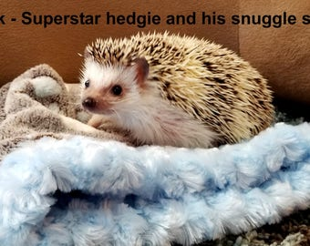 """Snuggle Sack, Pouch for Hamster, Sugar Glider, Mice, Rat, Guinea Pig and Hedgehog - 9""""x9"""", Blue, Mint, Pink or Cream"""