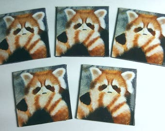Magnets! - Red Panda