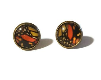 Orange Monarch Butterfly stud Earrings