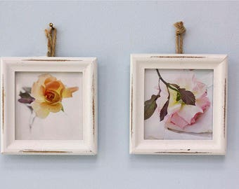 Two Framed Rose Prints, Framed Photograph, Rose Decor, Floral Art Print, French Country Wall Art