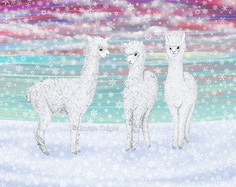 alpacas in the snow - signed art print 8X10 inches by Sarah Knight, winter scene white snowflakes camelid animals aqua blue magenta