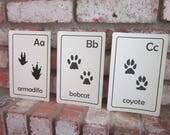 Printable PDF Animal Tracks ABC Flash cards (original)