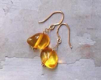 Gold Baltic Amber Earrings - Dainty Gold Earrings - Golden Honey Earrings - Natural Amber Earrings - Simple Elegant Earrings