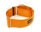 "Dog Collar - 2 Inch Width Nylon - Buckle, Martingale, Martingale w/ Buckle ( 2"" width dog collars Various Colors )"