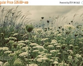 20 Percent Off Sale queen annes lace green botanical print clouds home decor