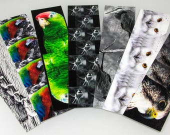 The Bird Watchers Book Mark Superpack