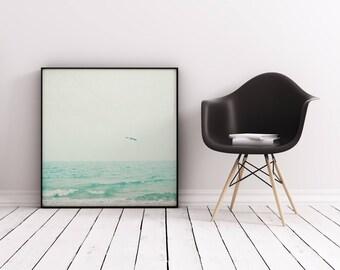 Sea Bird Print, Seascape Photography, Ocean Art - Lone Bird