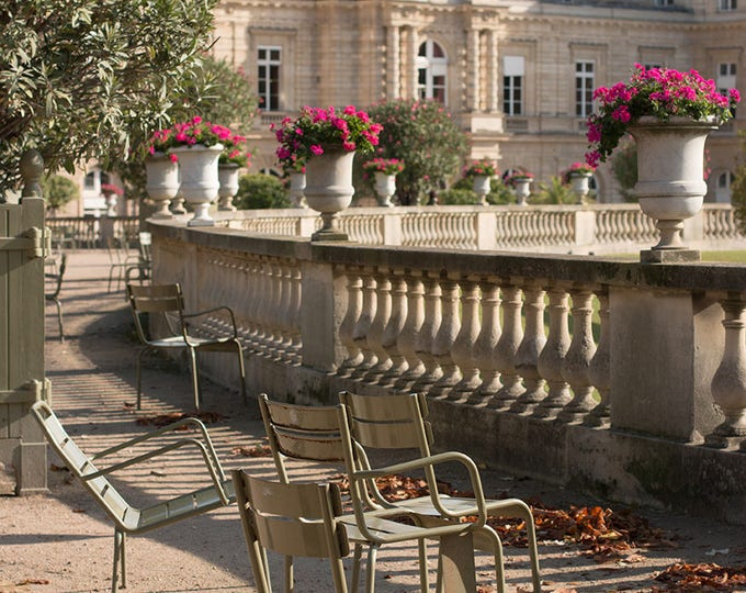 Paris Photography, Autumn in Jardin du Luxembourg, Fall leaves in Paris, Paris Decor, Fall Photography,Paris Garden,Nature, Rebecca Plotnick