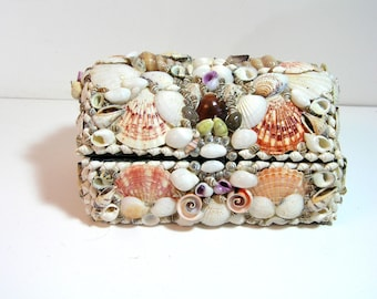Seashell Box, Domed Seashell Trunk, Beach House Decor