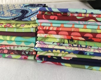 RARE Love Amy Butler Out of Print Fat Quarter Bundle Quilting Modern Contemporary Floral Roses Dots Colorful Green Red Blue piecesofpine