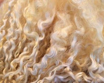 50g Teeswater Curls
