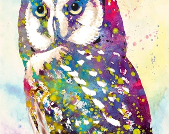OWL art owl night bird art poster art texture art nature wall decor illustration spotted owl