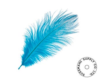 "Ostrich Feathers - Wholesale Wedding Feathers Ostrich Drab Plumes - Turquoise - 10pcs (14-17"")"