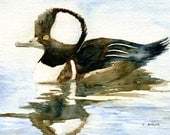 Painting of a Hooded Merganser Duck 5 x 7 Original Watercolor