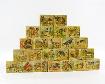 Antique ABC Blocks, Paper Litho Animal Blocks, Vintage Wooden Letter Blocks,