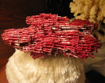 For Your SEA Vignette, VINTAGE  Intricate  Pipe Organ Coral Deep Red Rare & Unusual Indo-Pacific Organic Textured Tubes From Old Collection