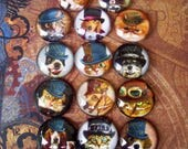Steampunk Cats and Dogs Cabochons (L26) Jewelry and Craft Supply, Lot of 14 pieces, 25mm Image Under Glass Dome