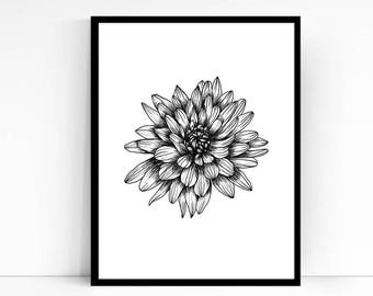 Printable Wall Art PDF - Chrysanthemum Illustration - Hand drawn Mum