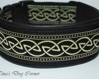 2 inches celtic dog collar, black/gold