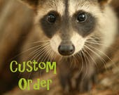 Custom order for Rachel