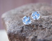Real flower jewelry | Forget me not Flower Earrings | Flower stud earrings | Real flowers earring | Forget me not studs earring