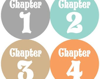 Baby Storybook Chapter Monthly Milestone Growth Stickers Storybook Fairytale Baby Nursery Theme Baby Shower Gift MS Baby Photo Prop