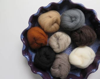 Wool Roving | FURRY FRIENDS Collection 8 colors of 100% Wool roving for Needle Felting, Spinning, Wet Felting - 2 oz set