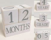Baby Age Blocks - Photo Prop - 0 - 43 Weeks, Months, Years and Grade - Shabby Chic Gray