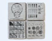 Vintage Microbiology Illustration Coasters, Set of 4, Science, Biology Gift