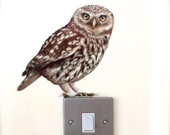 Oswald Little Owl