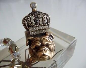 Ring crowned dog