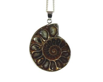 Ammonite Fossil | Ammonite Necklace | Men's Necklace | Ammonite Pendant | Genuine Fossil | Ammonite Pendant Necklace | Womens Necklace