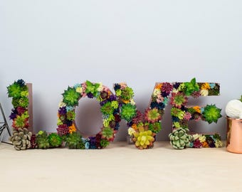 succulent letters - love letters - floral letters - rustic wedding sign