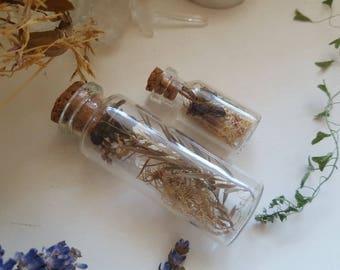 sale bottled nature bee altar set