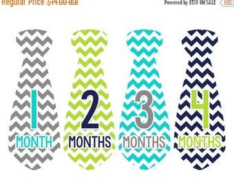 Monthly Baby Necktie Milestone Stickers Baby Boy Precut Tie Baby Shower Gift Baby Stickers Monthly Baby Stickers Baby Month Sticker 734