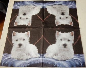 New West Highland white terrier dog paper towel