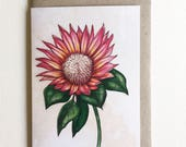 Greeting Card, A6. Watercolour Protea Flower Artwork. Pink Protea. Artwork by Jennifer Magno on Etsy.