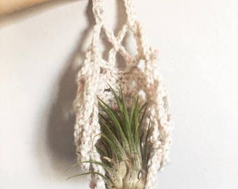 Left Me Hanging | Crocheted Air Plant Holder / Air Plant Hanger