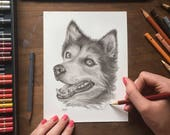Custom Pet Portrait, Custom Dog portrait, Custom Cat Portrait, Graphite Pencil, Original, Handmade drawing, Made to Order. Painting Drawing