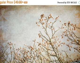 ON SALE Nature Photograph, Autumn Landscape Art, Tree Photo, Rustic, Kitchen Wall Art, Wall Art Home, Bedroom, Office, Rust, Gray, Gold, Bro