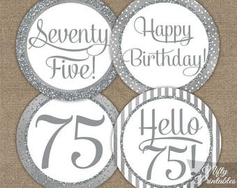 75th Birthday Cupcake Toppers - Silver 75th Birthday Toppers - 75 Year Old Birthday Party Decorations - 75th Birthday Favor Tags SLV